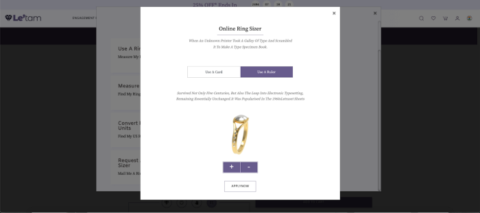 Figure 3.3: Item Page - Ring Sizer